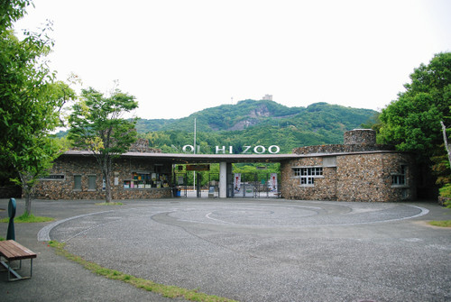 Dsc_0335
