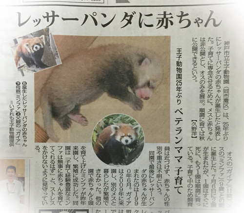 News_oji_2